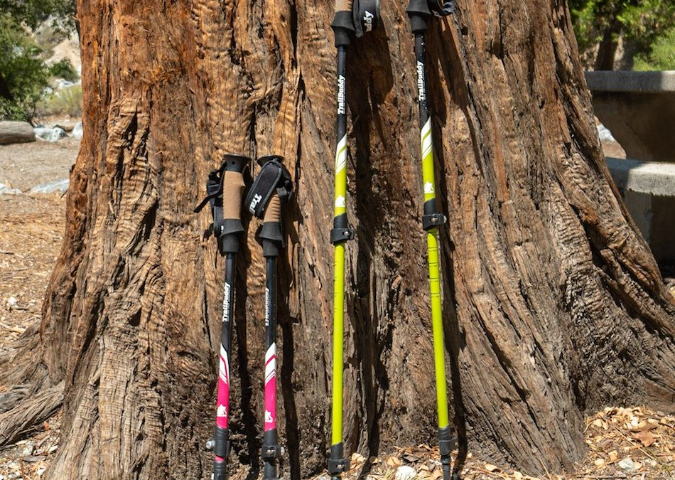 My One-Year Experience With TrailBuddy Trekking Poles (Review)