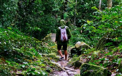 7 Tips for Staying Cozy and Dry While Hiking in the Rain